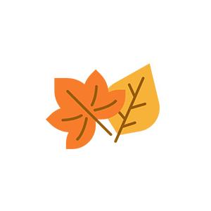 saison-automne